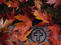 """Cincinnati – Spring Grove Cemetery & Arboretum """"Cross Under The Autumn Leaves"""" (David Paul Ohmer) Tags: ohio cincinnati spring grove cemetery arboretum springgrovecemetery gravesites burial grounds death spirit soul deceased graveyard conservatory victorian gothic revival national historic landmark adolph strauch cemetary autumn fall foliage springgrove springgrovecemetary seasons color leaf leaves leaflet"""
