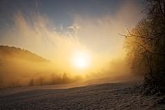 Fog is like cinema (Manuel.Martin_72) Tags: morning schnee trees sun snow sunshine yellow fog fairytale forest schweiz switzerland nebel sony magic hill foggy bluesky gelb nebula mysterious mystical alpha sunrays sonne wald morgen blauerhimmel atmospheric enchantment sonnenstrahlen mystisch sonnenschein winterthur neblig zauber bäume hügel manuelmartin märchen dättnau a99v atmosphärisch
