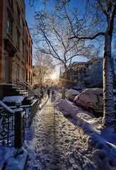 Congress Street Snow, Brooklyn (Costadelaluz) Tags: snow sunrise snowscene sunstar snowystreet snowstreet brooklynsnow sunrisesnow canonef1440mmf4l snowscapebrooklyn cobblehillsnow cobblehillstreet