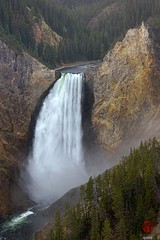 Lower Falls of the Yellowstone River (Mark Kaletka) Tags: water river landscape waterfall scenic falls vista yellowstonenationalpark yellowstone overlook lookoutpoint
