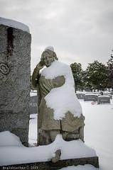 Woodbine in Winter   2015 - X (RGL_Photography) Tags: winter snow cemetery graveyard newjersey unitedstates headstone tombstone monmouthcounty jerseyshore gravesite weirdnj oceanport cemeteryart woodbinecemetery nikon18105mmf3556vr nikond7000 cutroneo
