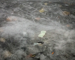 Frozen Assets (ep_jhu) Tags: money ice water frozen bill dc washington districtofcolumbia unitedstates 5 capitol dollar dcist reflectingpool dinero iphone congelado sequestration