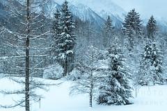 Chamoniiix (fontograph) Tags: france mountains alps europe skiing wanderlust traveller chamonix