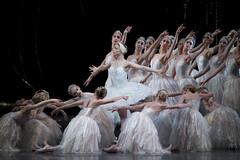 Petipa and Ivanov: The dance partnership that saved Swan Lake