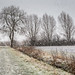 Snowday - RSPB Ouse Fen