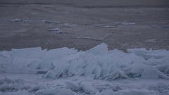 DSC_5022-2 (BadPeter!) Tags: park winter sunset sun lake toronto ontario canada cold rabbit ice water colors rocks stones deep freeze leslie thompson