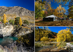 Gold of Central Otago (Jocey K) Tags: autumn trees newzealand sky people buildings river shadows southisland centralotago mountians arrowtown autunm kawaraugorge