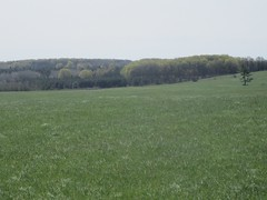 Rolling Hills of Antrim County (cohodas208c) Tags: spring michigan torchlake greengrass antrimcounty