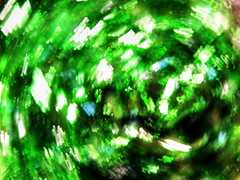 1 Dream in Swiral Green (Mertonian) Tags: light two white abstract green canon mark digitalart creative dream powershot dreaming ii swirl ll shadesofgreen mertonian g1x robertcowlishaw canonpowershotg1xmarkii canonpowershotg1xmark2