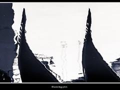 fantasy (magicoda) Tags: street venice people blackandwhite bw italy white abstract lines see nikon couple italia foto shadows candid curves ombra dream curioso bn ombre line persone fantasy voyeur fantasia upskirt gondola fotografia dslr curve astratto venezia riflessi reflexion biancoenero gondolier coppia riflesso sogno updown gondole veneto d300 linee 2016 nowife gondoliere vedere blackwhitephotos streetphotografy magicoda davidemaggi maggidavide nobarefoot