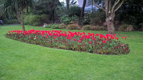 Bournemouth Gardens on May (2) by Robert Potter