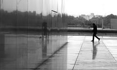 The wall of mist (pascalcolin1) Tags: blackandwhite mist reflection rain umbrella noiretblanc pluie bnf reflets streetview brume parapluie paris13 photoderue urbanarte photopascalcolin