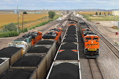 Busy times at East Alliance (Moffat Road) Tags: railroad train nebraska ne locomotive bnsf emd coaltrain allaince sd70ace unittrain eastalliance bnsfsandhillssubdivision