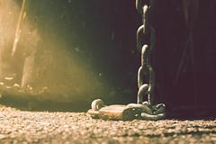 Enchanted (simonpe86) Tags: light glitter contrast licht lock chain schloss kontrast idyllic idylle kette funkeln