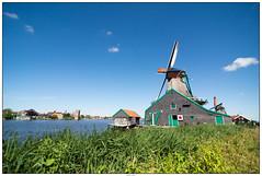Molens met Zaandijk (voorhammr) Tags: gras zon zaanseschans zaandam molens 2016 vakwerk huisjes blauwelucht jolandakraus