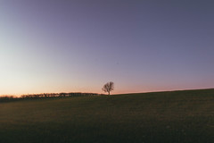 Twilight Gradient (Adam_Marshall) Tags: adam marshall landscape sunset goldenhour twilight stereocolours outdoors trees hills sky sawtry field adammarshall vast empty minimal minimalism cold open gradient canon eos70d sigma 1750mmf28 countryside cambridgeshire