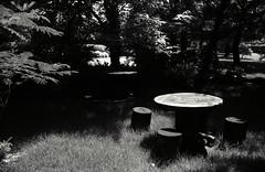 IMG0173 (matsuura6809) Tags: blackandwhite nikonf4 ilfordsfx200  yoshidapark