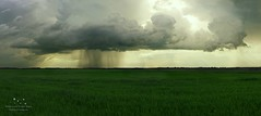 Storm (understars8) Tags: sky cloud storm nature rain weather hail clouds skies threatening wheat stormy fields thunderstorm chasing supercell