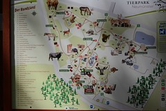 Tierpark Neumnster (Ulli J.) Tags: germany deutschland zoo tyskland allemagne duitsland schleswigholstein neumnster tierparkneumnster