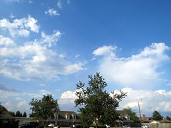 Big Sky. (dccradio) Tags: trees sky cloud tree clouds nc northcarolina bluesky greenery cloudformation clearsky lumberton robesoncounty walnutmanorapartments