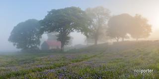 The misty barn
