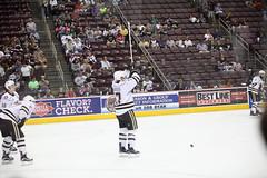 Chris Bourque (hartmantori) Tags: hockey bears den caps hershey ahl defend hersheybears washingtoncapitals hersheybearshockey