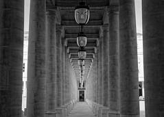 Royale colonnade (Guillaume DELEBARRE (Guigui-Lille)) Tags: blackandwhite bw paris france architecture canon 50mm ledefrance dof noiretblanc columns perspective wb repetition palaisroyal colonnade lampes colonnes profondeurdechamp ef50f12 whiteandblanc