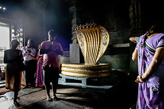 Hindu Penchant For Many Hooded Cobra (Anoop Negi) Tags: light india against photography gold golden photo cobra prayer religion karnataka hindu mythology anoop belur negi sesh worhsip ezee123 naag shaiyya