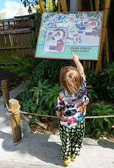 We are here (quinn.anya) Tags: sam toddler map pointing zoo