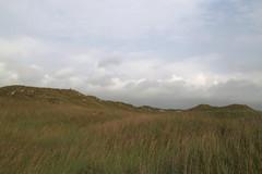 dunes_padre_island_ns_6D4177 (cold_penguin1952) Tags: beach padreisland padreislandnationalseashore