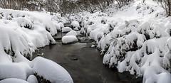 The beautiful snow (Jay Daley) Tags: winter snow nikon australia panoramic nsw d810 koscuizckonationalpark