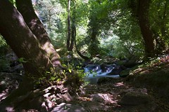 Cascate del Freja (Gothic74) Tags: freja montegelato cascate waterfalls fujifilm xm1 fujix fujinon 1650mm nature natura lazio
