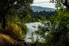 Vasona Lake as sunset approaches (randyherring) Tags: california park trees sky plants sunlight lake mountains reflection water clouds us afternoon unitedstates outdoor lensflare santacruzmountains losgatos recreational santaclaracountyparks vasonalakecountypark
