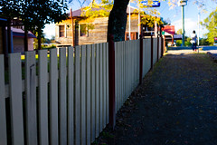Fence (Anne and Ray) Tags: street fence outdoor au australia newsouthwales wollombi