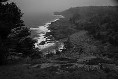 view from White Head, looking south, foggy, overcast, neak dusk, Monhegan, Maine, Nikon D40, Sigma 18-50mm EX DC Macro, 5.29.16 (steve aimone) Tags: whitehead lookingdown lookingsouth monhegan monheganisland maine coastine cliffs surf atlanticocean nikond40 sigma1850mmexdcmacro blackandwhite monochrome landscape