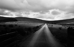 The Bleasdale Moors (Man with Red Eyes) Tags: monochrome landscape blackwhite raw conversion lancashire preston moor fell 18105 aonb forestofbowland nikond500 areaofoutstandingnaturalbeauty afsdxnikkor35mmf18g capturenxd