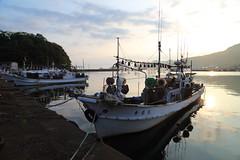 Sunrise (Teruhide Tomori) Tags: morning sea japan sunrise landscape countryside waterfront shore  fishingboat hyogo kasumi   fishingharbor