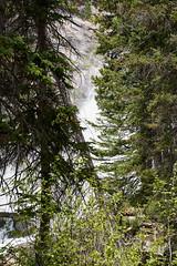 DSD_1571 (pezlud) Tags: grandtetonnationalpark tetonnationalpark landscape rushingwater water mountains nationalpark hiddenfalls