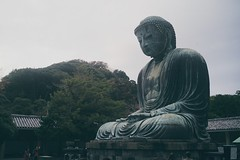 DSC01485 (Data Chrome) Tags: street city trees statue japan forest photography tokyo big asia antique buddha kamakura streetphotography huge buddah buddism japon