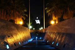 Sacramento Capitol (bb8ller) Tags: california trees man town long exposure downtown board homeless down scooter palm capitol skate penny skateboard sacramento bord