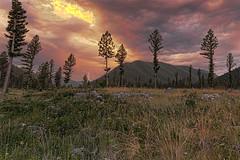 Boulder Creek Lodge (dgilder) Tags: bouldercreeklodge hall montana thunderstorm lightning woods field mountains pinetrees sunset usa