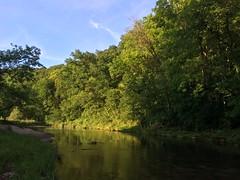 IMG_1324 (mlmck) Tags: flyfishing wisconsin rushriver trout water creek sky stream river ciel catchandrelease
