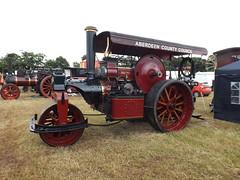 ~ Nut Roast @ Daresbury Steam Fair 2016 ~ (A4ANGHARAD) Tags: nutroast roadroller aberdeencountycouncil macevans daresburysteamfair2016 daresbury cheshire