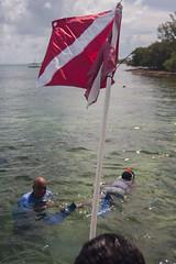 IMG_6774 (Florida Sea Grant) Tags: coral kids youth keys snorkel gulf florida dive sponge keyswest mahoganyyouth