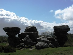 Brimham Rocks (MightySnail) Tags: spring nationaltrust brimhamrocks gritstone