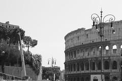 Tag 3 - Basilica St. Paolo fuori (16)