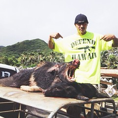 "Visit DEFENDHAWAII.COM/blog/category/hanapaahoundz and check out the ""HANAPA'A HOUNDZ"" thread updated by @brianakina #defendhawaii #hanpaahoundz #hawaiian #hunting #hawaii • <a style=""font-size:0.8em;"" href=""http://www.flickr.com/photos/89357024@N05/8741569279/"" target=""_blank"">View on Flickr</a>"