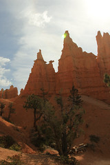 Zion Bryce and G. Canyon (piyush.k) Tags: arizona sculpture colors wow wonder utah nationalpark colorado natural bryce zion fascinating amphitheaters horseshoeshaped paunsaugunt