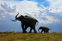 Mammoths on the move (sirchill88) Tags: sky silhouette statue bronze clouds canon mammoth 7d lubbock columbian lubbocklakelandmark