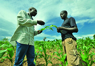 September 8 - Helping farmers improve food security